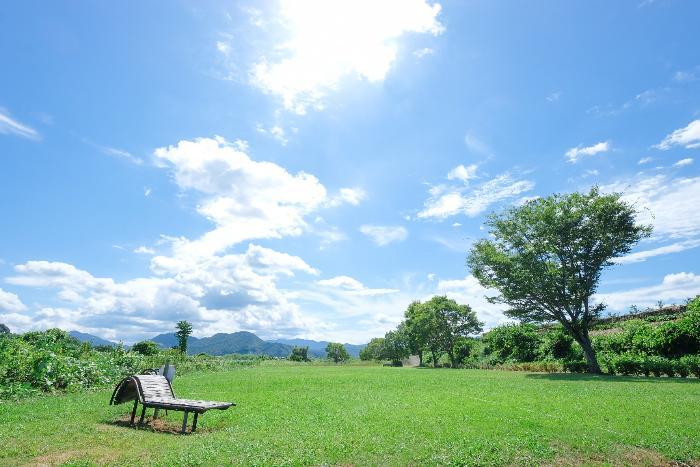 花の里河川公園キャンプ場/有田川町